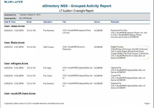 eDirectory NSS - Grouped Activity Report